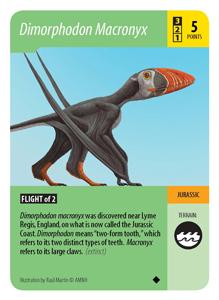 dimorphodon-small